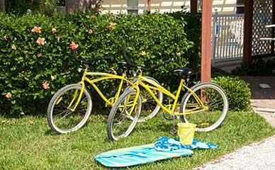 Cruise Anna Maria Island on our beach bikes.